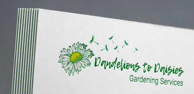 Dandelions to Daisies Logo and Brand Design