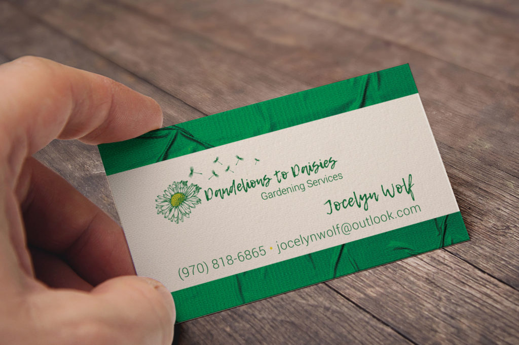 Dandelions to Daisies Business Card